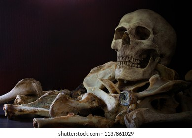 Skull on pile of bones put on the wooden plank which has dim light on the dark wall background / Selective focus, Still Life Image and space for texts