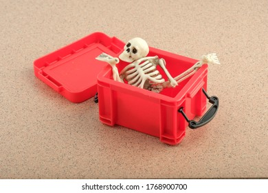 the skull and other parts of the skeleton were collected in a red plastic box. disassembled human skeleton