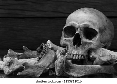 Skull and pile of bones wooden wall background / blurred and selective focus, Still Life Image, Adjustment color black and white
