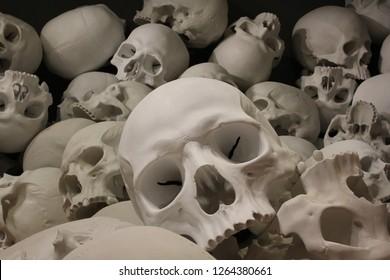 Skull piled together