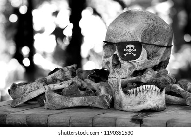 Skull of pirate which has blindfold single eye on pile of bones and  wooden table in the green gardent / Still Life image selective focus and adjustment color black and white