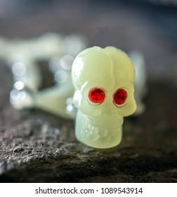 Skull of a plastic toy skeleton