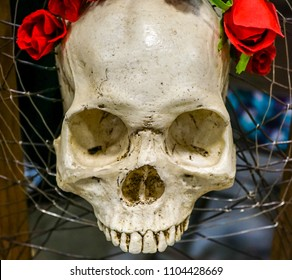 A Skull with Red Roses
