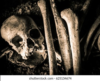 Skull and skeleton at the burial site in Sulawesi, Indonesia. It is their tradition to keep the dead body in the cave instead of burying beneath the ground. Photo is converted to sepia mode.