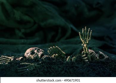 Skull and skeleton on ground dry soil dark background,concept halloween background