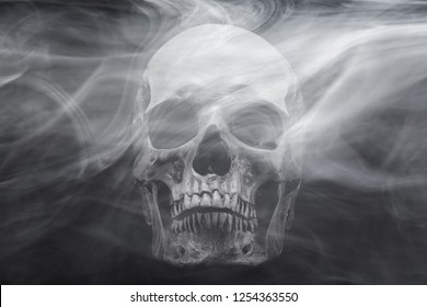 Skull in the smoke on black background. Stop smoking concept.