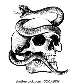 Skull Rattle Snake Stock Illustration 737350396