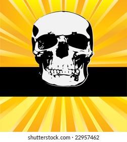 Skull Sunburst Bitmap Message