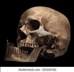 skull-open mouth, broken jaw. isolated on black background