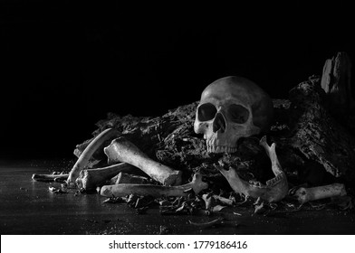 Skulls and bone put on decay timber and the wooden table in old room which has dim light and dark background / Selected focus, Still life image, space for text and adjustment color black and white