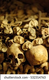 skulls and bones in catacombs france