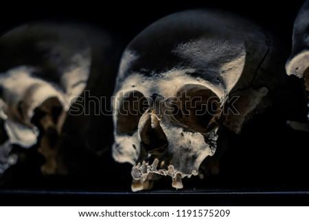Skull dating