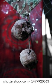 Skulls on the background of a red rag. Halloween decor or post apocalypse. Outdoor shooting, selective sharpness