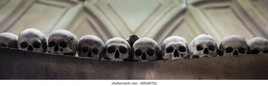 Skulls in row. People dead of plague