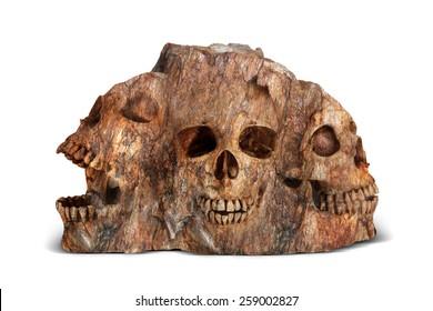 skulls in stone, concept