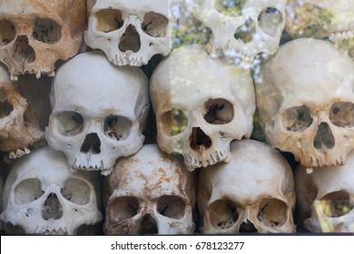 Skulls Wall behind glass with tree reflection in memorial camp building in Cambodia close to Phnom Penh