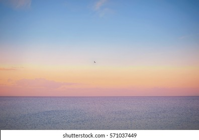 Sky background on sunset. Nature composition. Panoramic sunset sky background. Sunrise sky with lighted clouds.Seagull. Beautiful sunset over sea with reflection in water, majestic clouds in the sky.