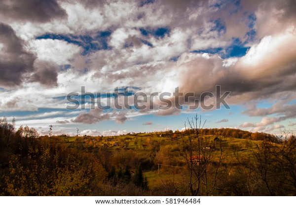 Sky border and the forest