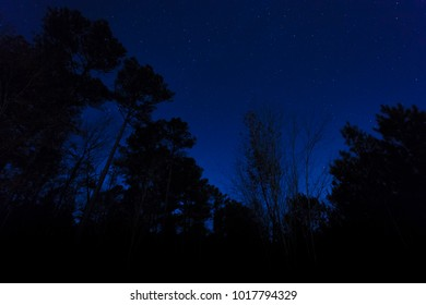 Sky filled with stars in a rural portion of North Carolina