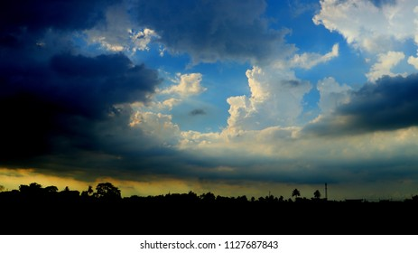The sky with forest silhouette