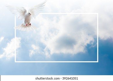 Sky Funeral Background