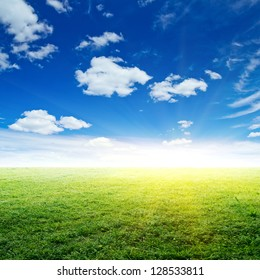 Sky and grass. Summer background