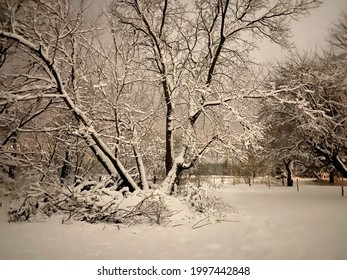 The sky was an indescribable color. The vegetation was covered with snow. It was a special atmosphere. Beautiful winter evening. Quebec, Canada, January 17, 2021.