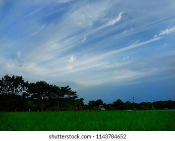 sky at parks coler blue