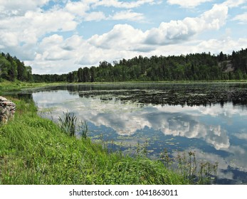 Sky reflection in a lake. Cloudy sky and trees in the background