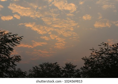Sky and sunrise in the morning