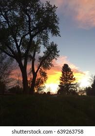 Sky Sunset Colors Landscape Background Trees