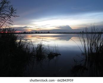 Sky & swamp in the evening