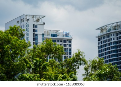 Sky and trees in the forest background with city building.