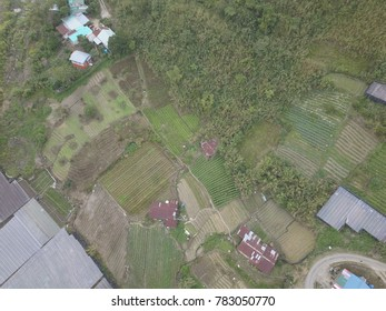 Sky view of Kundasang,Ranau,Sabah.Kundasang is famous for its agricultural products such as vegetables and fruits.