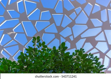 Sky Web Architecture pattern with leafs