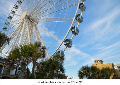 Sky wheel and palm trees