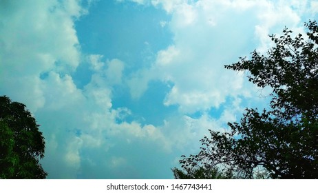 skyblue cloud  and gree trees