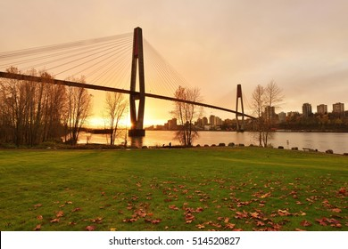 The SkyBridge is a cable-stayed bridge for sky trains between New Westminster and Surrey