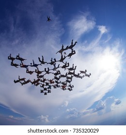 skydiving big formation in free fall