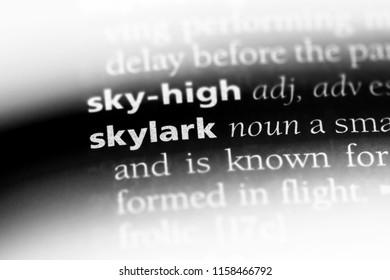 skylark word in a dictionary. skylark concept.