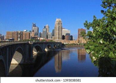 Skyline and bridge reflected in the Mississippi River, tree in foreground