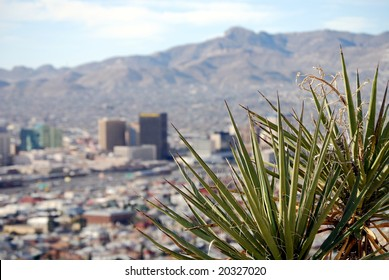 Skyline of downtown El Paso, Texas, with yucca plant in the foreground and mountains on the Mexican side of the border