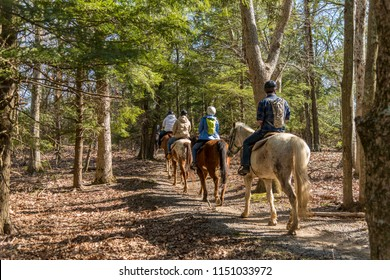 Skyline drive, Virginia, USA - April 12, 2018: Horse riding group on a trail in the woods