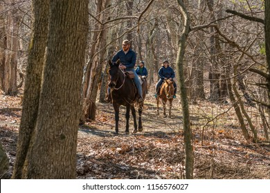 Skyline drive, Virginia, USA - April 12, 2016: Horse riding group on a trail in the woods