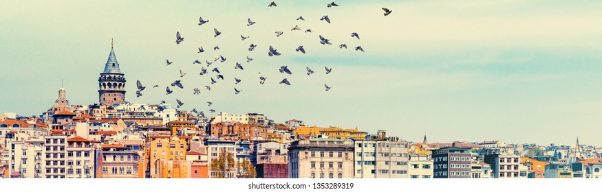 Skyline of Istanbul with Galata Tower and flying birds over town, top view. Urban landscape of Istanbul with buildings of Beyoglu and Karakoy areas, travel background for your banner.