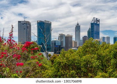 Skyline of Perth seen from Kingspark with juicy vegetation as foreground