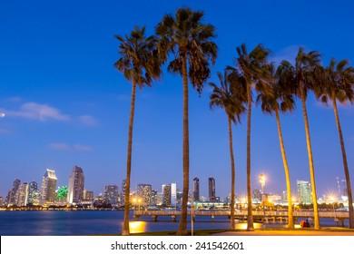 Skyline of San Diego and Palm Trees, California USA