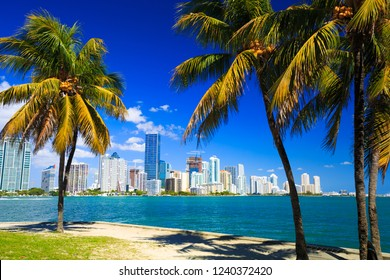 Skyline view of Miami Florida