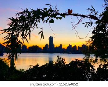 Skyline viewed during a sunset at Atalaia beach, Itajai City, Brazil.