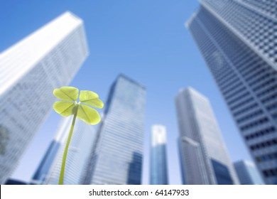 Skyscraper and clover